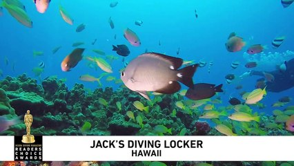 Jack's Diving Locker 2019