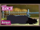Bonbon - Staffel 2 Folge 14 | Lenas Ranch