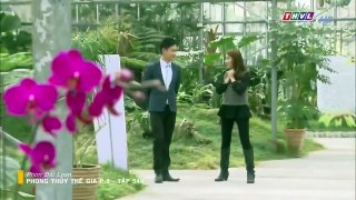 Phong Thuy The Gia Phan 3 Tap 549 Ngay 22 2 2019 Phim Dai Lo