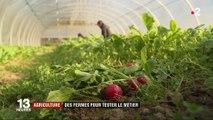Agriculture : ces fermes qui permettent d'essayer le métier d'exploitant agricole