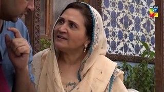 Ranjha Ranjha Kardi Episode 17 Full HUM TV Drama 23 February 2019