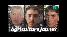 Au Salon de l'agriculture 2019, les éleveurs sont-ils gilets jaunes?
