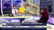 La vie immo: Avec un rendement de 4,3% en 2018, l'érosion des SCPI va-t-elle continuer ? - 25/02