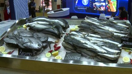 Int'l fisheries fair closed in Morocco
