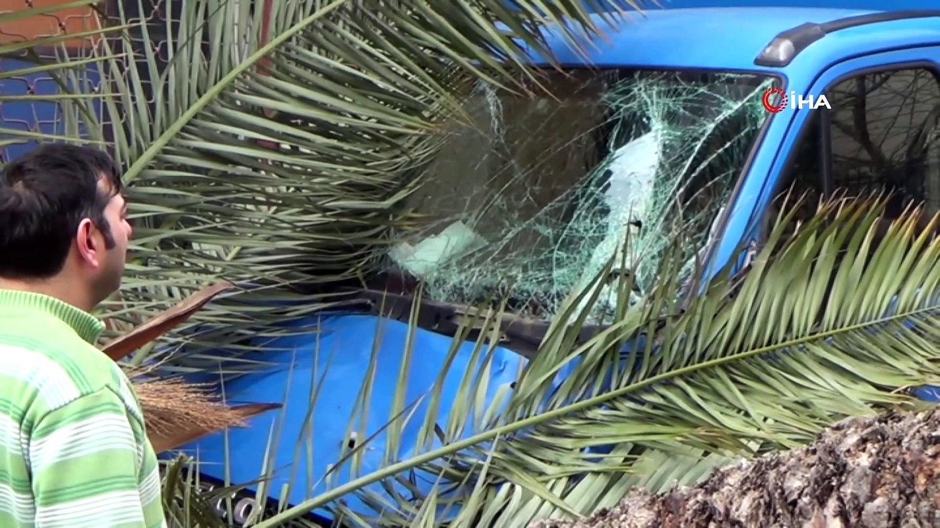 Hatay'da fırtına ağaçları devirdi, otomobiller hasar gördü