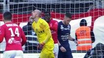 Top arrêts Ligue 1 Conforama - Février (saison 2018/2019)