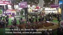 La région Nouvelle-Aquitaine s'expose au Salon de l'agriculture