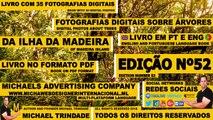 Magazine Digital Edição 52 Árvores Ilha da Madeira PT-PT