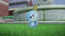 Pokémon Epée / Bouclier - Lancez-vous sur les chemins de la gloire