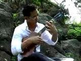 Jake SHIMABUKURO - While my guitar gently wheeps