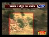 Leopard creates panic in Agra colony