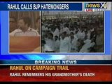 Rahul Gandhi recalls 'pain' of Indira & Rajiv Gandhi's deaths in Churu rally - NewsX