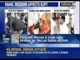 Loksabha Elections 2014: BJP will discuss and chalk out a strategy for it's Mission 2014 - NewsX