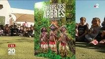 La ville de Vence est contre la déforestation... mais favorable à sa terrasse en bois d'Amazonie