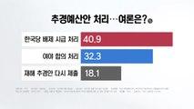 """[더뉴스 앵커리포트] 길 잃은 추경...""""한국당 없이 4당 처리"""" 41% / YTN"""