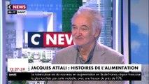 """Jacques Attali sur le gaspillage alimentaire : """"Un tiers de ce qu'on produit est produit pour rien"""""""