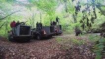 La Bulgarie relâche trois oursons dans la nature