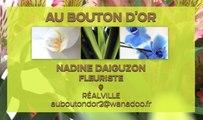 Fleuriste - Fleurs, plantes, décorations, articles funéraires - Réalville - Au bouton d'Or