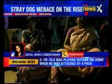 20 month old toddler mauled to death by stray dogs in Vizag