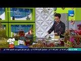 """بيتك ومطبخك - من المغرب.. الشيف جلال فاروق جايبلنا طريقة عمل """"شوربة الحريرة"""""""