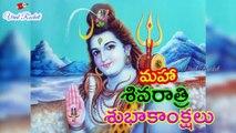 Happy Maha Shiva Ratri 2019 Wishes | MahaShivaRatri special status, wishes  || Shivaratri Whatsapp Status video | Viral Rocket
