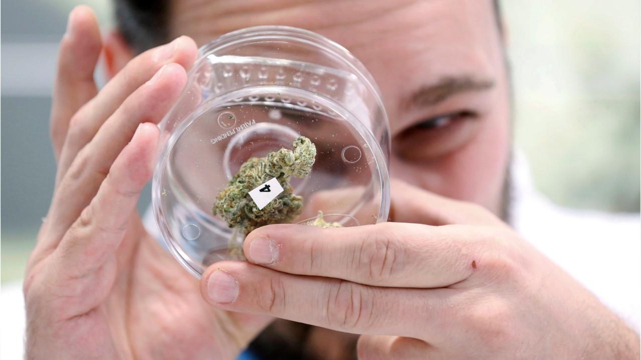 Cronos Sells Its Stake In A Medical-marijuana Facility To Rival