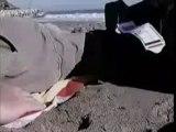 Video avion secrase atterissage avion accident