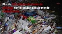 WWF : « La production de plastique pourrait augmenter de 40 % d'ici 2030 »