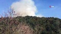 Sultangazi Cebeci Köyü'nde ormanlık alanda yangın çıktı. Olay yerine çok sayıda itfaiye ekibi sevk edildi