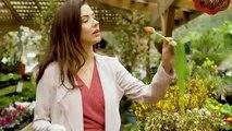 Hallmark Spring Fever 2019 Trailer