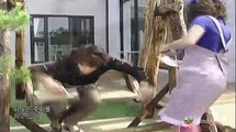 Full House: Bi Rain - Song Hye Kyo
