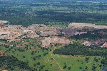 Alles über weltweite Entwaldung