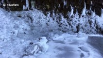 Freezing weather turns Portland waterfall into enchanting icy grotto
