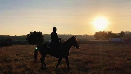 Camp Claude - Horses (Audio)