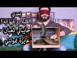 Mohamed Aamer  - تحدي ايه في الصندوق || جابتلي ثعبان بس انا مسكتش || عامر و سلمى