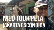 Novos guias de turismo: O guia revelador