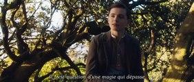 Nouvelle bande-annonde du film Tolkien