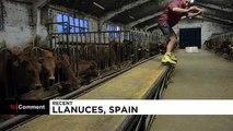 Espagne : un skatepark à la ferme