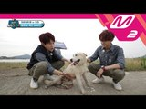 [2017 WoollimPICK] Pet sitters' hard work! Where is David the runaway dog? EP.6