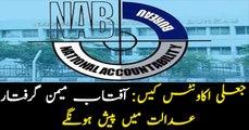 NAB arrests Secretary KDA Aftab Memon in fake accounts case