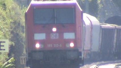 Züge am Rhein bei Lorch, MRCE 189, 3x DBAG 185, vlexx Coradia LINT 54, VIAS Stadler Flirt BR427