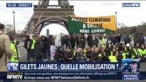 Quelques gilets jaunes réalisent un sit-in devant la Tour Eiffel ce matin