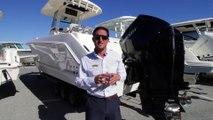 2019 Boston Whaler 250 Outrage at MarineMax St. Petersburg, Florida