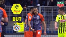 But Ellyes SKHIRI (16ème) / Montpellier Hérault SC - Angers SCO - (2-2) - (MHSC-SCO) / 2018-19