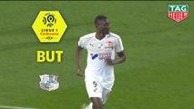 But Sehrou GUIRASSY (49ème) / Amiens SC - Nîmes Olympique - (2-1) - (ASC-NIMES) / 2018-19