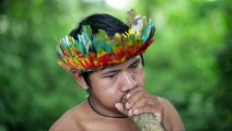 Brésil : les terres indigènes menacées par l'arrivée au pouvoir de Bolsonaro