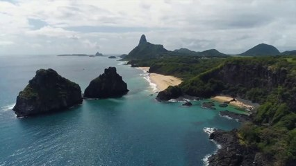 Fernando De Noronha Resource | Learn About, Share and