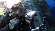 Scuba Diving Shark Reef at Mandalay Bay