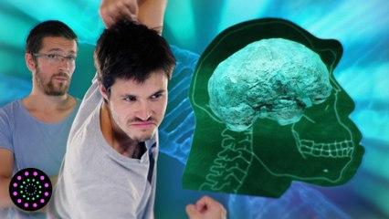 La civilisation dans nos gènes | DirtyBiology & Pause Process | Le Vortex #4