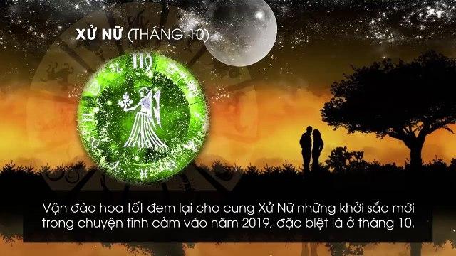 12 cung hoàng đạo và các tháng vượng đào hoa tương ứng trong năm 2019
